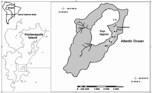 Location of Peri Lagoon and the sampling sites along the Sangradouro River. The numbers indicate the sampling sites (coordinates for each site: 1: 27°43 31.91S/ 48°30 35.9′W; 2: 27°43.963′S, 048°30.608′W; 3: 27°44.540′S, 048°30.596′W; 4: 27°45.043′S, 048°30.542′W; 5: 27°45.224′S, 048°30.256′W; 6: 27°45.117′S, 048°30.143′W) according to Hennemann & Petrucio (2011).