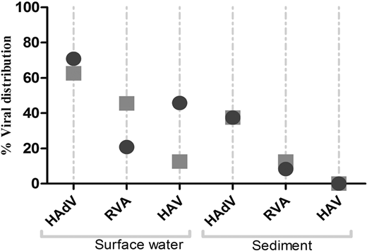 Viral distribution (percentages) in surface water and sediment samples during the summer and winter collections (P > 0.05); summer (), winter ().