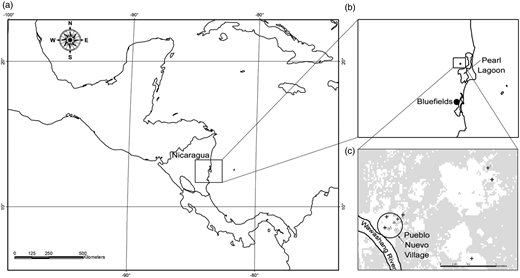 Location of Pueblo Nuevo, Nicaragua and GIS map showing location of 32 sampled wells. Map (a) shows an entire map of Nicaragua. Map (b) shows Pueblo Nuevo relative to other major areas on the east coast. Map (c) shows well sampling sites within or near Pueblo Nuevo relative to the Rio Wawashang.