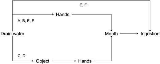 Schematic of drain exposure scenarios. A, B denote accidental drain entry with direct hand-drain water contact; C, D denote incidental drain entry to retrieve an object; E, F denote deliberate drain entry.