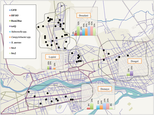 Map of positive detections of pathogens or MST markers in stored drinking water taken from homes in each study neighborhood.