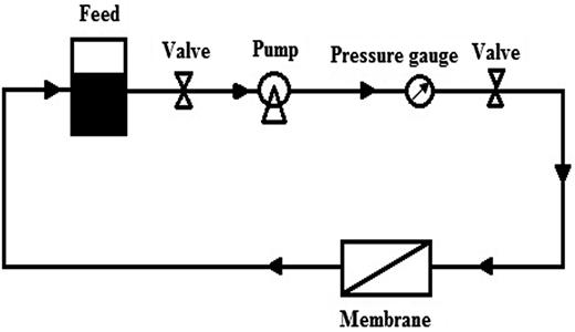 Schematic representation of filtration process (Basiri et al. 2011).