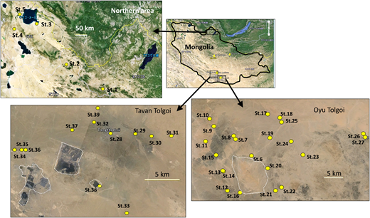 Locations of sampling sites (St. 1–St. 39) in a survey of groundwater quality in three areas of Mongolia, one in the northern area free of mining activity and two in the vicinity of large mines, Tavan Tolgoi and Oyu Tolgoi. Broken lines show the mining area.