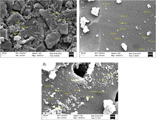 SEM images of raw walnut shell (a), walnut shell modified with ZnO (b), and walnut shell modified with TiO2 (c).
