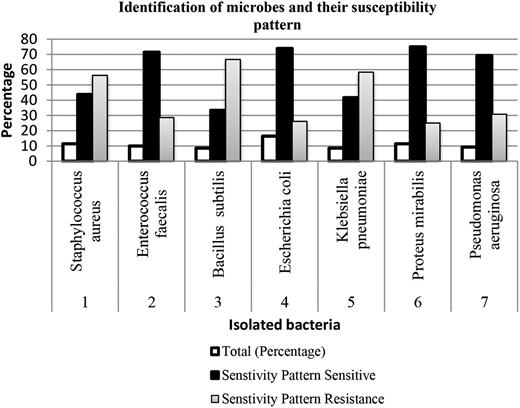 Graphical representation of microbes and their susceptibility testing.