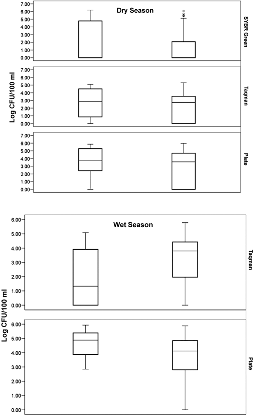 Log CFU/100 ml of surface water samples. Box plots are either the dry season (top section) or the wet season (bottom section) and split into rows based on enumeration method (SYBR green or Taqman qPCR, or plate counts). The bars in the left column are from urban surface water samples and the bars in the right column are suburban/river surface water samples.