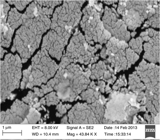 Scanning electron microscope image of natural kaolin clay after 10 h milling.