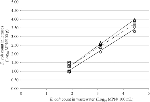 The linear regression of E. coli count (log10E. coli MPN/100 g) recovered from composite leaf samples of Iceberg (◊, —, Equation (6)), Cos (□, –··– Equation (5)) and Oak leaf (▵, ----- Equation (4)) lettuce and the E. coli count in the wastewater in which they were submersed (log10E. coli MPN/100 mL).