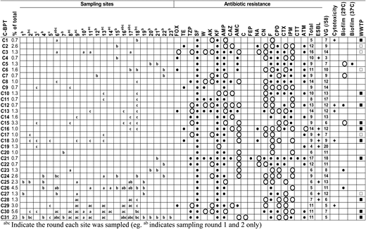 Common (C) BPTs of E. coli found at sampling sites along the Brisbane River across all rounds. A representative isolate from each C-BPT was screened for resistance to different antimicrobial agents, 58 E. coli VGs, cytotoxic activity against Vero-cell line and biofilm formation. +indicates production of cytotoxin; ○ indicates weak biofilm production, ● indicates moderate biofilm production. Strains with BPTs identical to those found in WWTP within the catchment ▪ or within the region □. For AB resistance, ● indicates resistance and ○ indicates intermediate resistance to ABs tested. FOX, cefoxitin; TE, tetracycline; TZP, piperacillin-tazobactam; SF, sulphurazole; W, trimethoprim; AK, amikacin; KF, cephalothin; AMP, ampicilin; CAZ, ceftazidime; AMC, amoxycillin/clavulanic acid; C, chloramphenicol; FEP, cefepime; NA, naladixic acid; CN, gentamicin; F, nitrofurantoin; CPD, cefpodoxine; CTX, cefotaxime; IPM, Imipenem; CTT, cefotetan; ATM, aztreonam; ESBL, extended spectrum beta-lactamase producing strains.