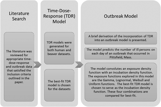 Outline of methods. The methods can be divided into three parts: (i) the literature search; (ii) the time-dose-response (TDR) model; and (iii) the outbreak model.
