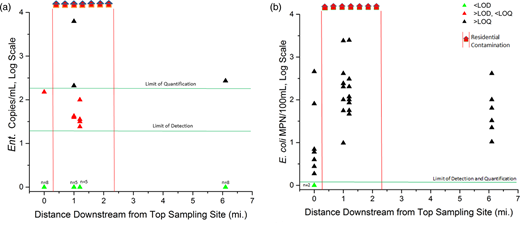 Longitudinal profile of Enterococcus (a) and E. coli (b) in Roaring Fork. Distance is measured along the stream starting from the most upstream sampling point. The data points are extrapolated below the LOQ. The number of samples below the LOD at each site is indicated by an n value. This does not include samples taken directly from household wastewater discharges.