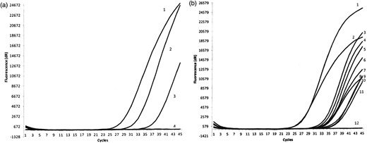 Results of detection of Giardia intestinalis assemblage A and B in positive environmental water samples using real-time PCR. (a) Results for G. intestinalis assemblage A: line 1, positive control; line, 2 Vistula Lagoon (S1); line 3, Osowskie Lake (S1); line 4, negative control. (b) Results for G. intestinalis assemblage B: line 1, positive control; line 2, Choczewskie Lake; line 3, Jeziorak Lake (S1); line 4, Vistula Lagoon; line 5, Osowskie Lake; line 6, well Radosze; line 7, Pozorty Lake; line 8, well Ołownik; line 9, Jeziorak Lake (S2); line 10, well Zielenica; line 11, well Jankowice; line 12, negative control.