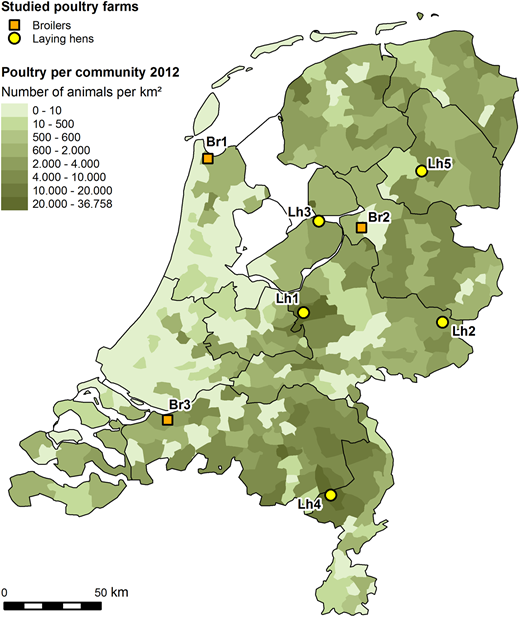 Geographical location of the sampled broiler and laying-hen farms in a map of the Netherlands that displays the poultry density in the country.