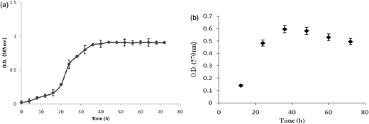 Biofilm profile of S. paucimobilis MG6 by (a) crystal violet assay and (b) MTT assay.