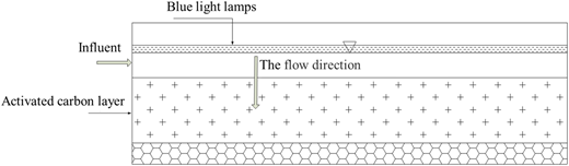 Layout of blue light induction in the activated carbon filter.