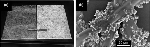 (a) Physical appearance of the non-woven fabric sheet (left) and ZES (right), and (b) SEM image of ZES.