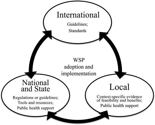 Influence of enabling-environment elements across international, national, and local boundaries.