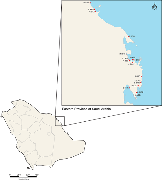 Locations of the 17 sampling sites in the Eastern Province of Saudi Arabia.