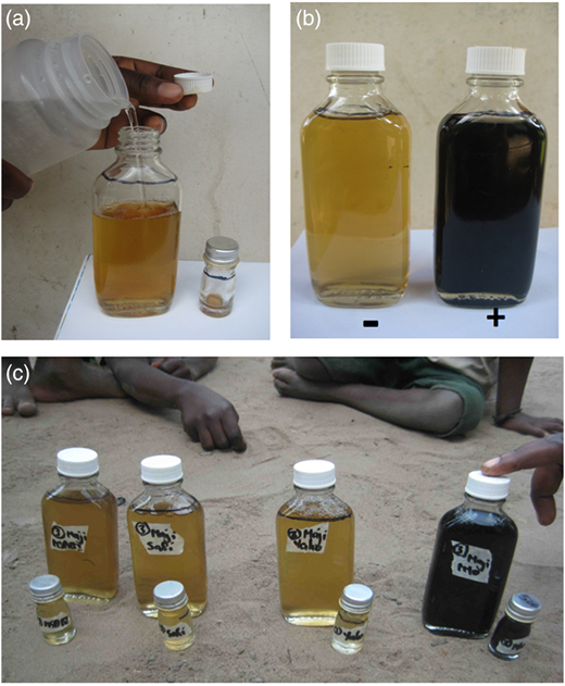 H2S water quality testing: (a) water sample being added to 100 mL and 5 mL bottles containing H2S media; (b) after 24 h at ambient temperatures (22–30 °C) positive samples turned black (bottle on the right) while negative samples had no colour change and remained straw coloured (bottle on the left); (c) H2S demonstration in the field with a community member correctly identifying the positive sample (far right).