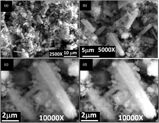 SEM images of SnO2 microrods synthesized by co-precipitation technique: (a) overall view of the product, (b) magnified view of product at 5,000 × , and (c) and (d) 10,000 × .