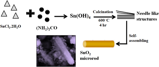 Formation mechanism of SnO2 microrods.