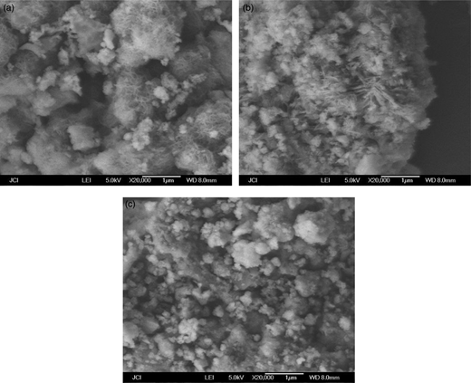 The SEM images after reaction: (a) CMC-nZVI; (b) agar-nZVI; (c) starch-nZVI.