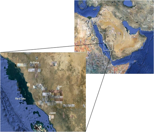 Area of study in the south-western region of Saudi Arabia.
