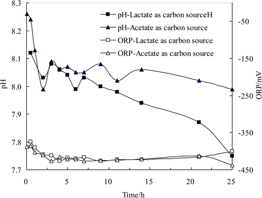 Changes in pH and ORP with lactate or acetate as carbon source.