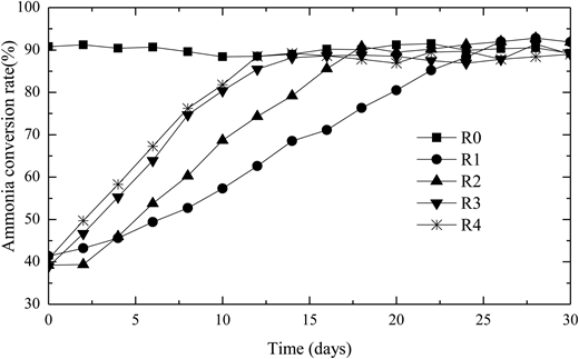 Profiles of ammonia conversion rate during the recovery period with different strategies.