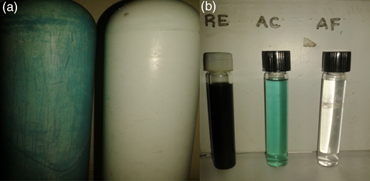 (a) Before and after permeate flux of the UF unit and (b) samples of real textile effluent (RE), after column sample (AC) and after UF sample (AF).