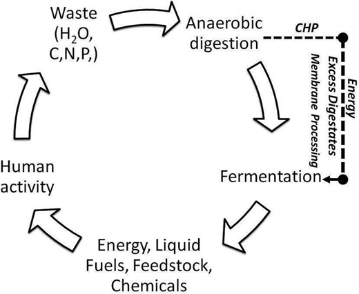 Process integration with current systems of waste treatment.