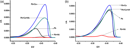 Linear scan ASV of Pb using a glassy carbon electrode: Ca/Pb competitive binding as a function of pH at pH 4 (a) and pH 8 (b); measured at constant ionic strength (I = 0.1 M KNO3).