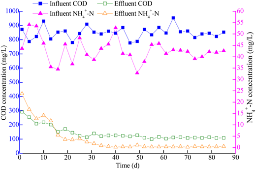 Influent and effluent of COD and NH4+-N in pilot-scale SBR.