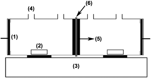 Schematic diagram of test cell: (1) Pt electrode, (2) magnetic bar, (3) stirrer, (4) orifice, (5) rubber ring, (6) membrane.