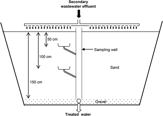 Schematic drawing of the infiltration–percolation basin (not to scale).