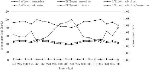 Profiles of influent and effluent nitrogen concentrations, and the ratio of nitrite/ammonium in the PN process.