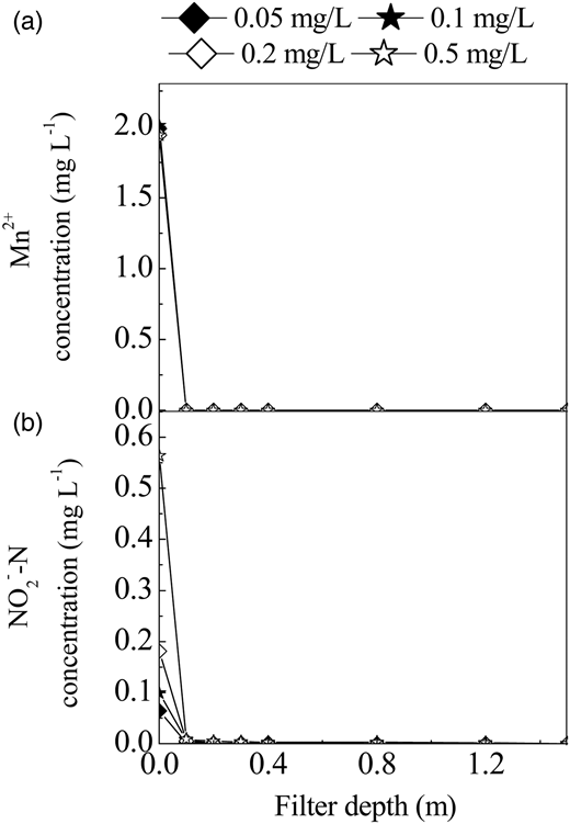 Mn(II) (a) and nitrite (b) concentration profiles along depth of filter 2 for Mn(II) feed concentration of approximately 2 mg L–1, and nitrite feed concentration of approximately 0.05, 0.1, 0.2 and 0.5 mg L–1, respectively, in aerobic conditions.