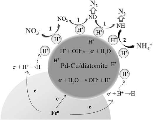Conceptual model of catalytic nitrate reduction.