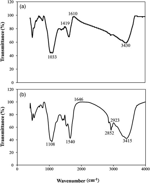 FTIR spectra of (a) PAC and (b) raw sludge.