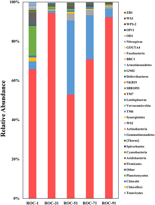 Taxonomic classification of bacterial 16S rRNA genes on phylum level (relative abundance >0.01%).