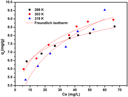 Adsorption isotherms of CIP on the schorl.