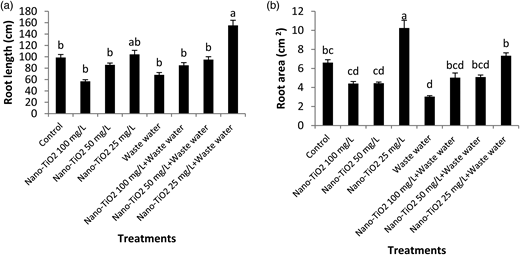 Effect of nano-TiO2 and waste water on (a) root length LSD: 54.578 and (b) root area LSD: 2.832. Mean values sharing common letters are statistically similar.