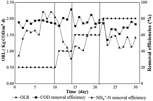 Treatment efficiency of the PVA process during OLR increased phases.