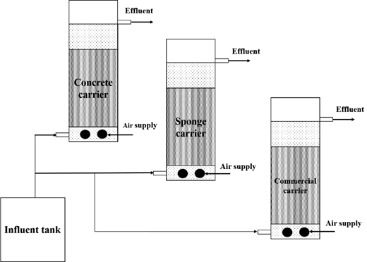 Schematic of attached growth reactors.