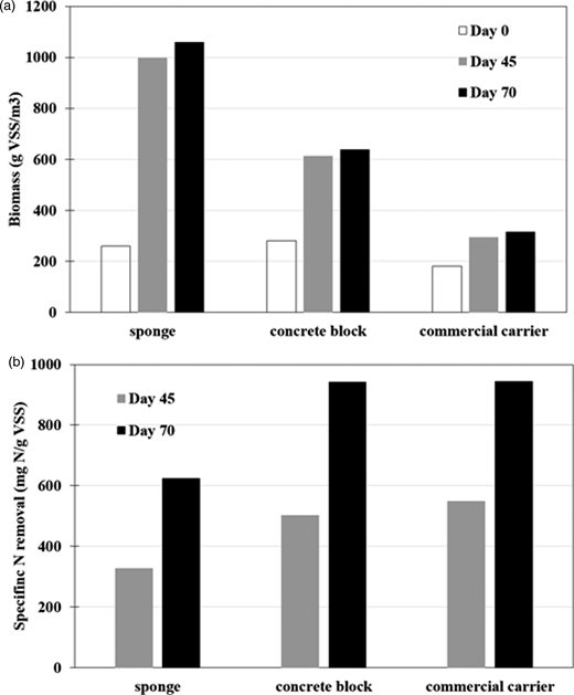 (a) Biomass content and (b) specific nitrogen removal on various carriers.
