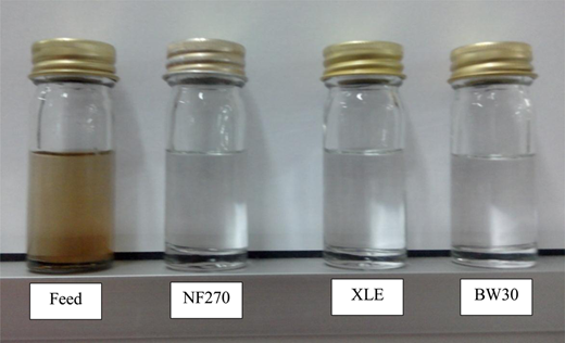 Illustration of feed and membrane-filtered diluted aerobic digested POME.