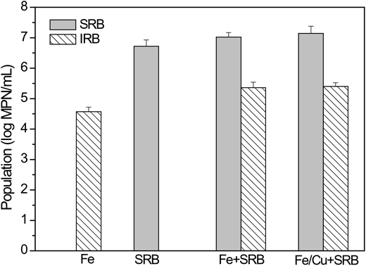 Most probable number populations of SRB and IRB in the three systems after 60 days of batch experiments. Experimental conditions were: [SO42−]0 = 3,000 mg/L, [COD]0 = 3,600 mg/L, pH0 = 7.0, T = 37 °C.