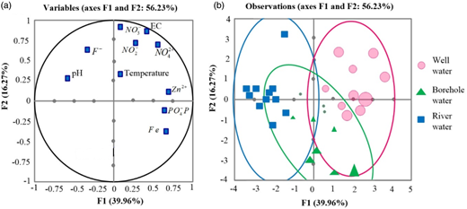 Distribution of the physical-chemical parameters with respect to the first and the second principal components in the sampled boreholes, rivers, wells waters; (a) correlation circle; (b) results of the principal component analysis.