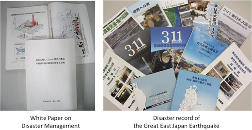 Efforts to collect disaster-related records and statistics.