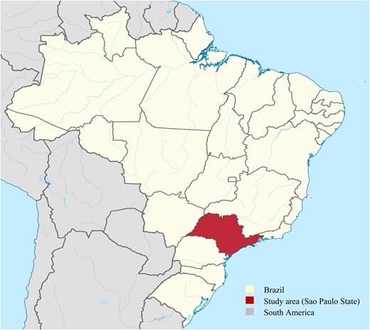 Sao Paulo State, Brazil (adapted from Lorenzeto de Abreu, 2006).